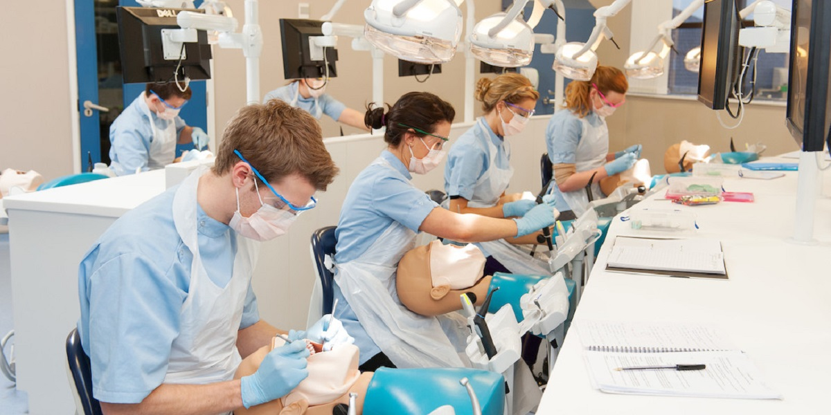 Students in the School of Dentistry